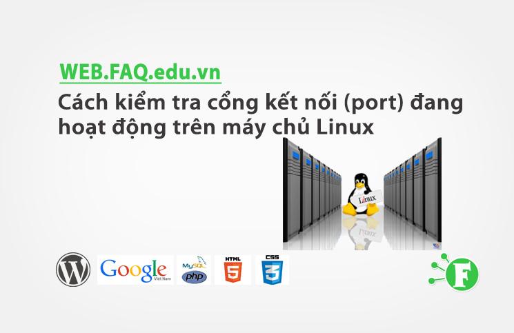 Cách kiểm tra cổng kết nối (port) đang hoạt động trên máy chủ Linux