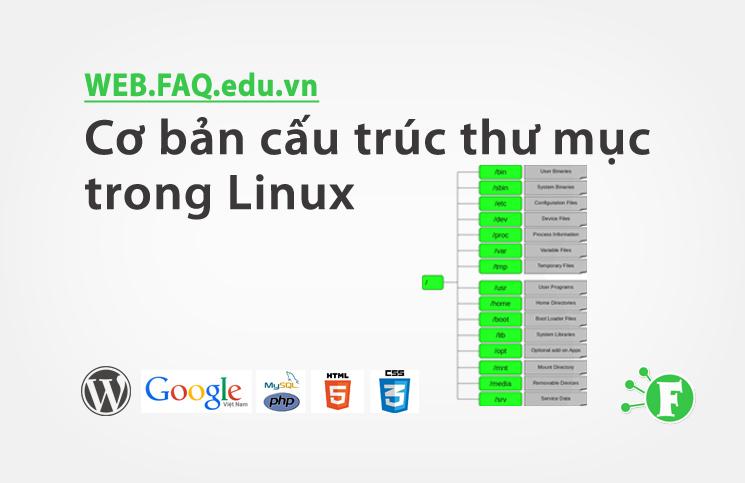 Cơ bản cấu trúc thư mục trong Linux